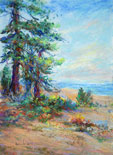 pastel by Shirley Bickel Evans